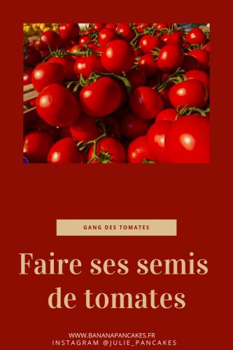 Faire ses semis de tomates.png