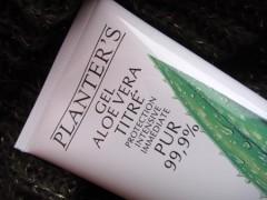 aloe_vera_planters_02.jpg