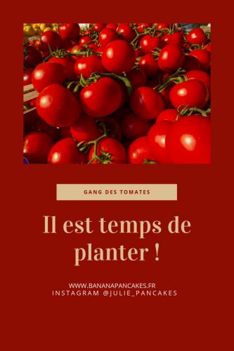 Faire ses semis de tomates (2).png